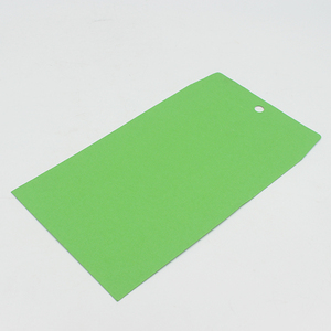 Green kraft clasp envelope